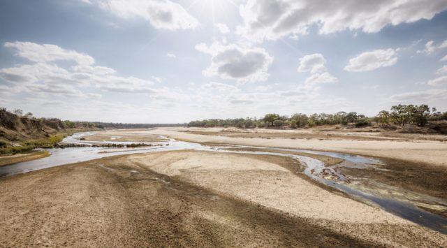 Parco del Grande Limpopo