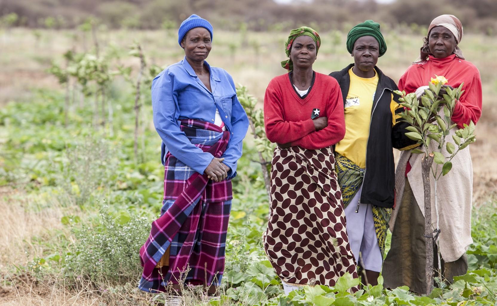 campagne di sensibilizzazione, come ridurre la fame, combattere la fame. Foto di Roger Lo Guarro