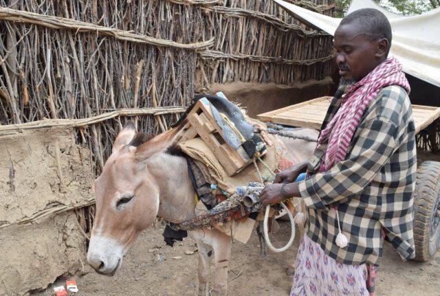 Deeq Sahal è un contadino di etnia Bantu che vive nel villaggio somalo di Garaash, nella regione di Hiran. Lui e la sua famiglia sono stati inseriti nel programma di cash-for-work attivato da Cesvi e dal Consorzio BRCiS.